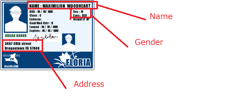 Supporter ID card_explain.png
